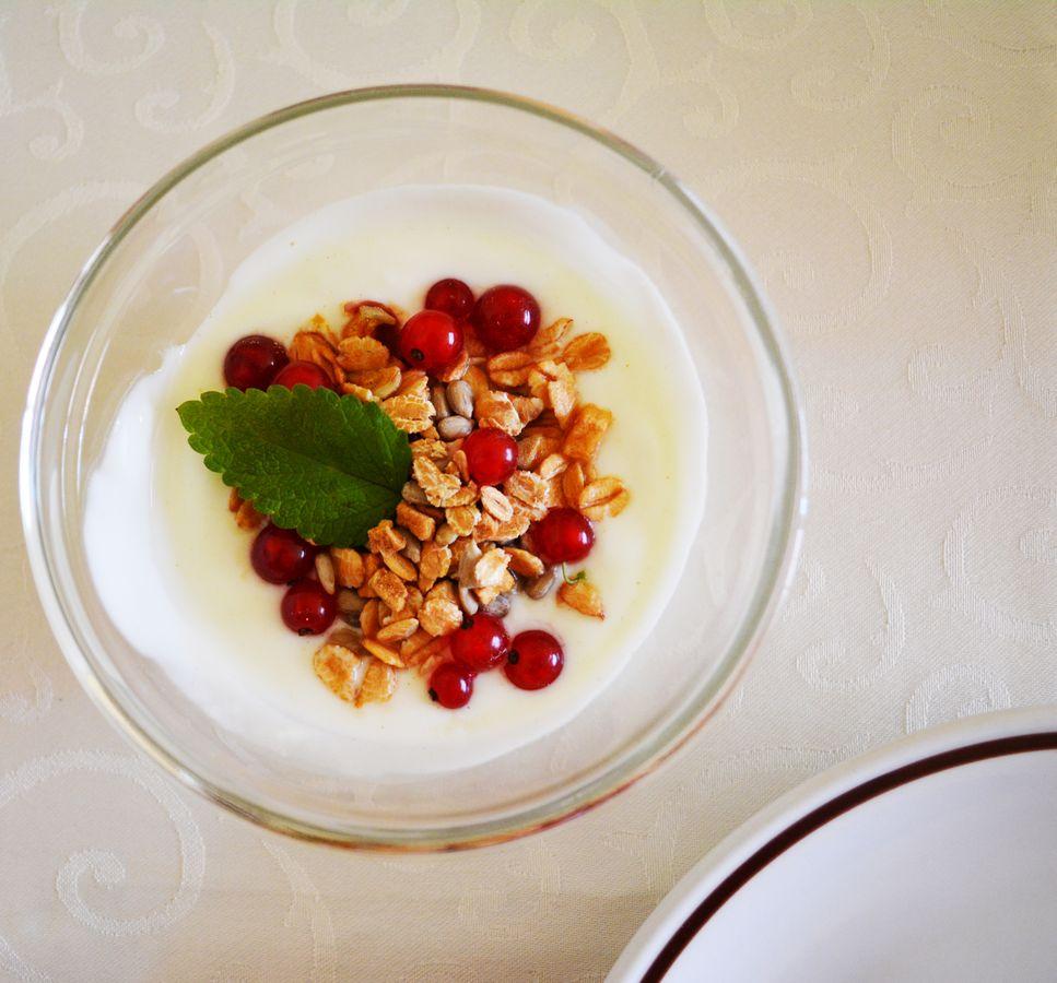 Yogurt Merano Huber